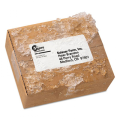 Avery 95523 WeatherProof Mailing Labels
