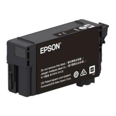 Epson T41P520 Black Ink Cartridge